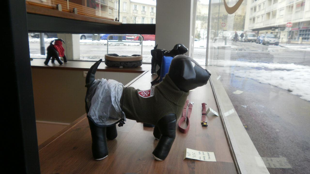 la boutique de l 39 institut du chien. Black Bedroom Furniture Sets. Home Design Ideas